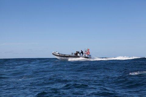 embarcações semi-rígidas_8.30_2